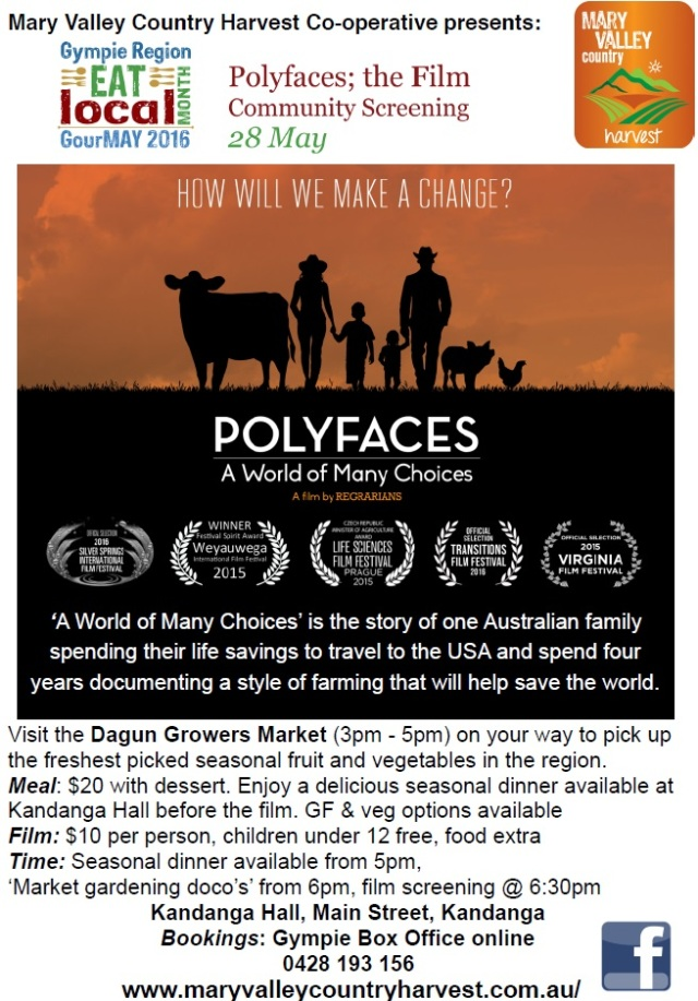 PolyFaceFlier